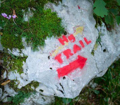 Hg Trail